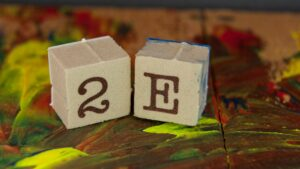 What Does Twice Exceptional Mean? Identifying and Nurturing Gifted Children with ADHD